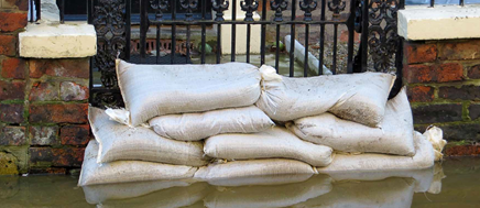 RICS Consumer Guide: Flooding