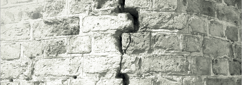 RICS Consumer Guide: Subsidence